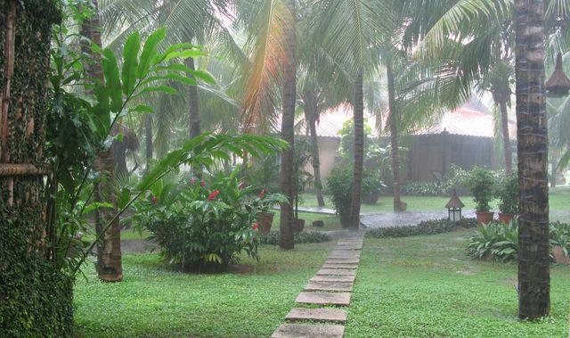 тропический дождь в камбодже