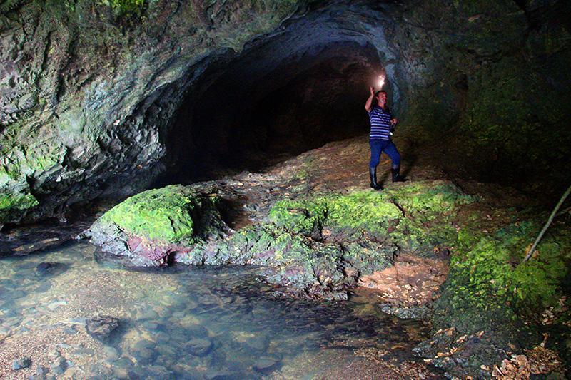 Гид пещеры Голова Отапа
