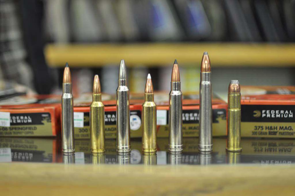 классификация охотничьих патронов