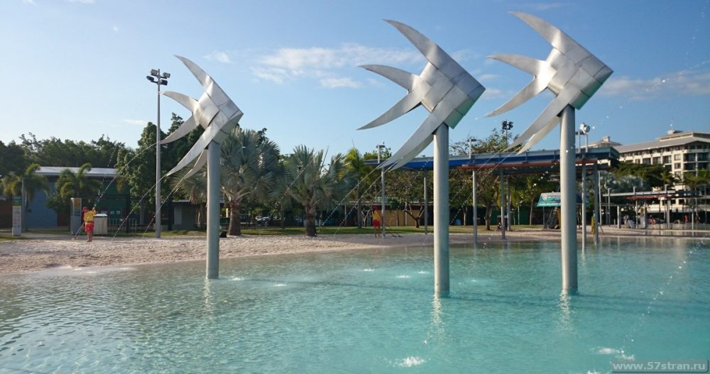 Swimming Lagoon Cairns