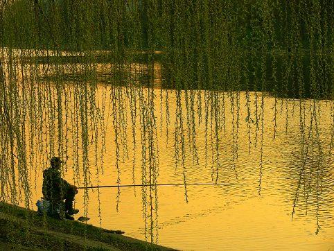 Благоприятное давление для рыбалки
