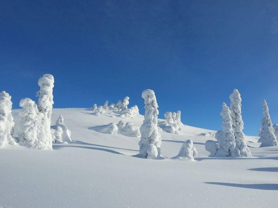 Норвежский горнолыжный курорт