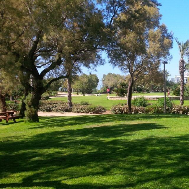 Парк независимость в Тель-Авиве
