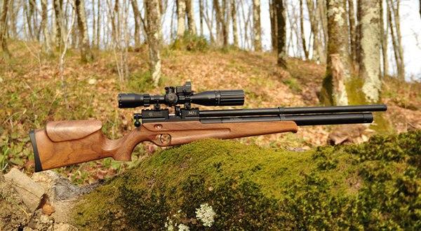 Охота с ружьем в лесу