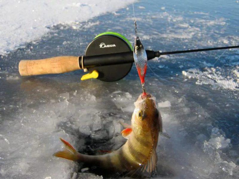 Способ ловли с зимней удочкой