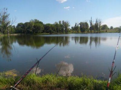 Удочка на озере