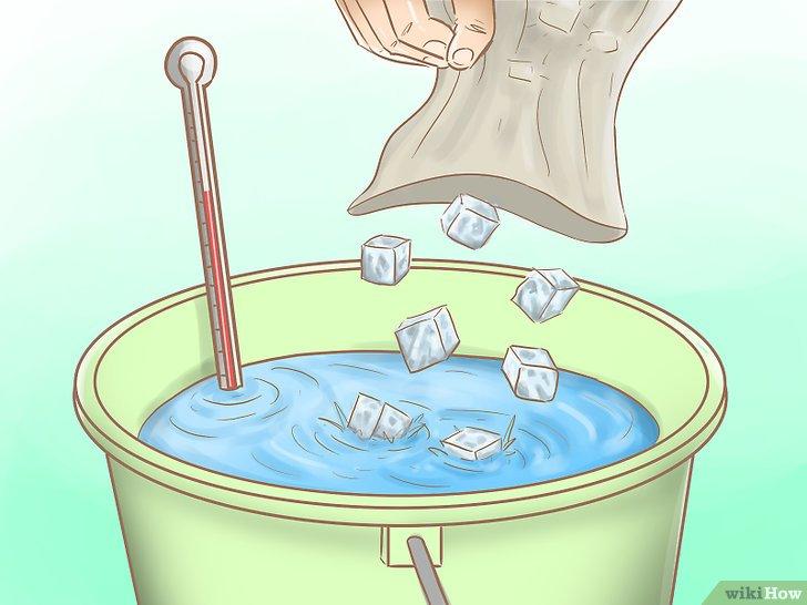 Изображение с названием Hook a Shrimp Step 10