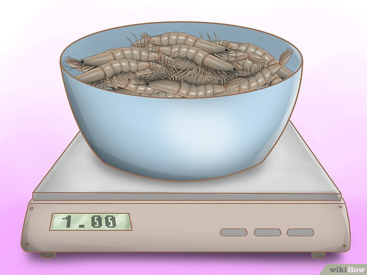 Изображение с названием Hook a Shrimp Step 12Bullet1