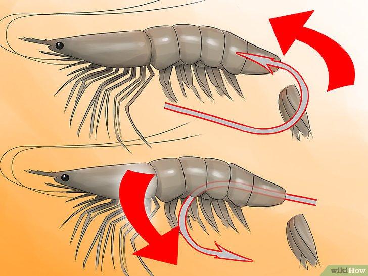 Изображение с названием Hook a Shrimp Step 3