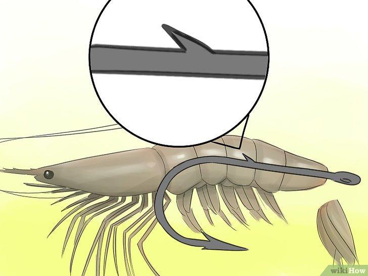 Изображение с названием Hook a Shrimp Step 3Bullet1