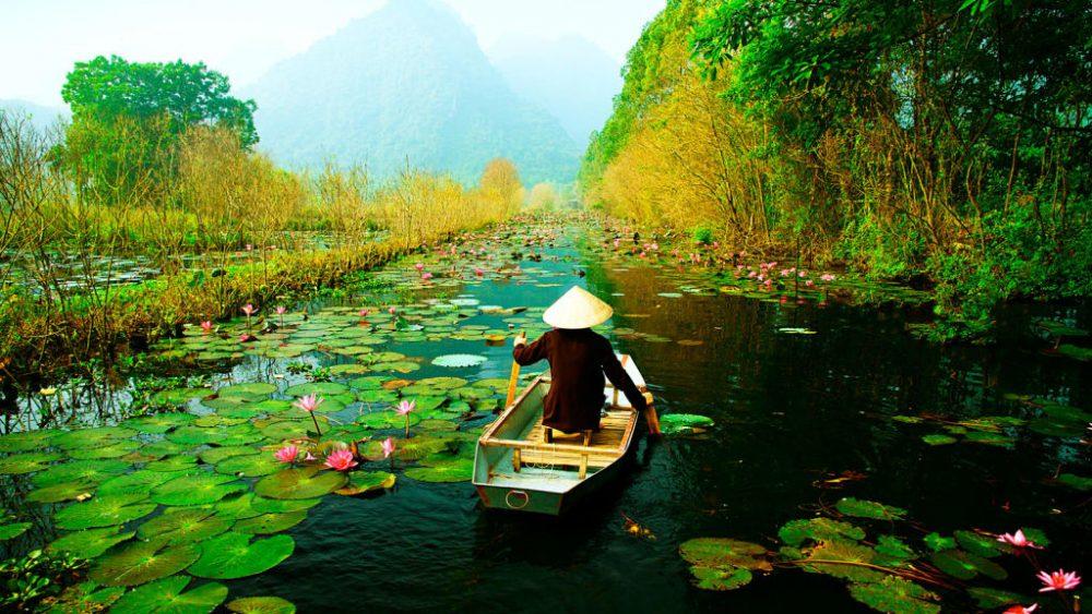 Озеро лилий