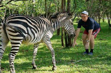 Знакомство Алексея Котельникова с зеброй. Замбия. Южная Африка
