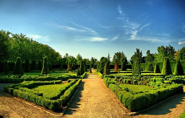 Ботанический парк Соанлы