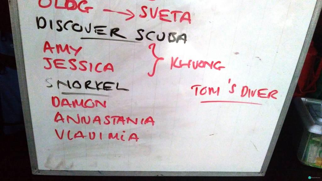 Имена участников плавания на стенде